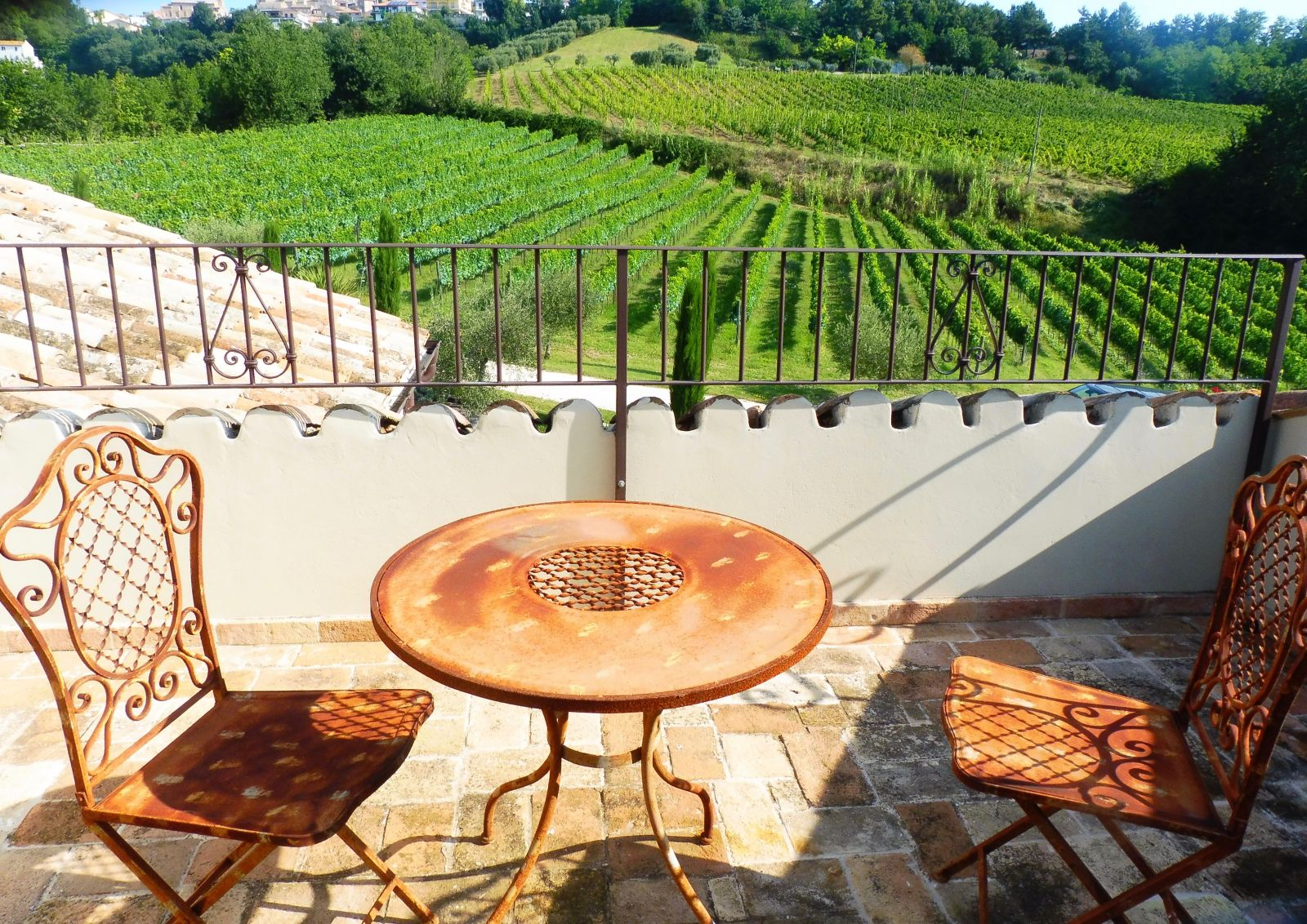 My private balcony for the week, overlooking the vineyard!